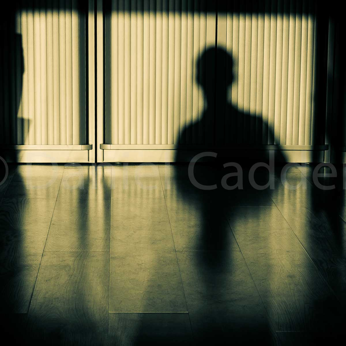 A photograph of a human shadow
