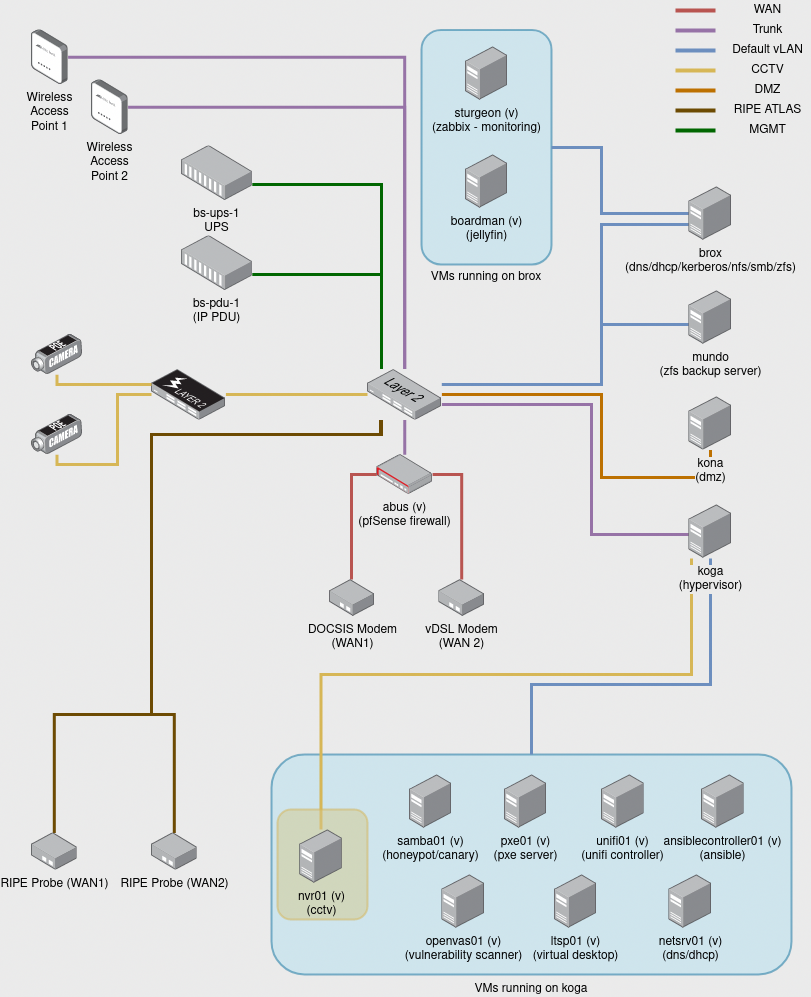 Network diagram depicting multiple vLANs, physical servers and virtual servers